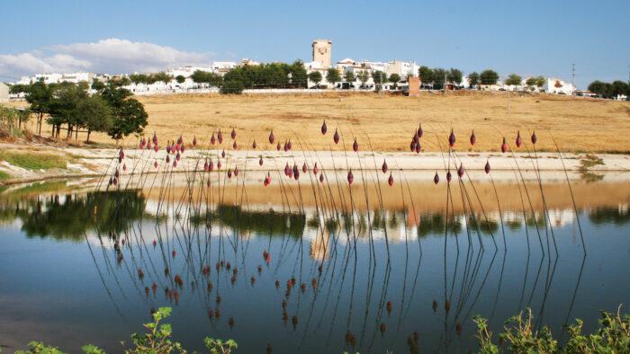 Imagen de portada de Fotografías de la Exposición «Scarpia 2002-2015»