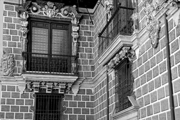 Imagen de portada de Palacio de la Madraza