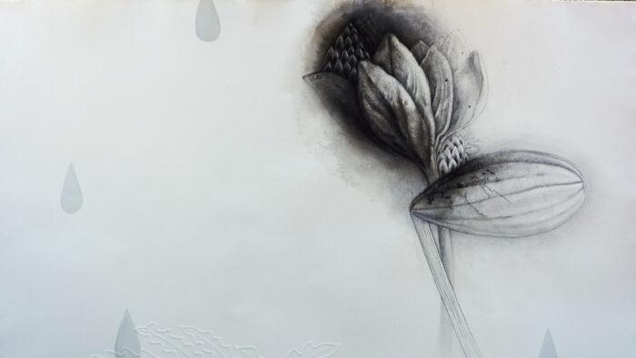 Imagen de portada de Fotografías de la Exposición «La sombra de la lluvia», de Mika MuraKami