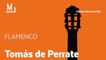 Imagen de portada de Flamenco