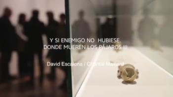 """Imagen de portada de Exposición """"¿Y si enemigo no hubiese? Donde mueren los pájaros (III)"""", de David Escalona y Chantal Maillard"""