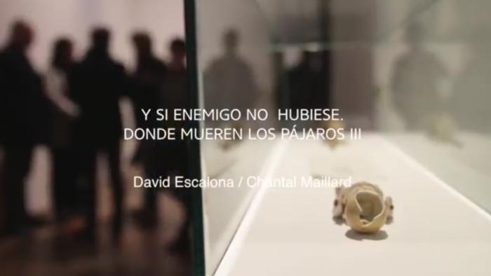Imagen de portada de Exposición «¿Y si enemigo no hubiese? Donde mueren los pájaros (III)», de David Escalona y Chantal Maillard