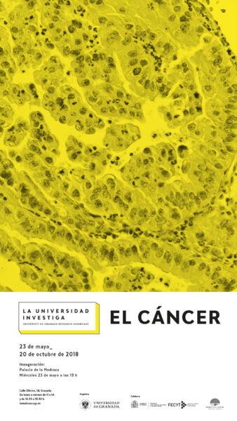 Imagen de portada de La Universidad investiga: el cáncer