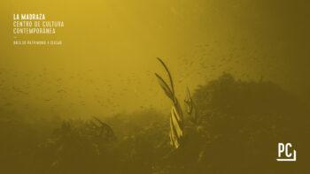 Imagen de portada de EDUARDO JIMéNEZ ARTACHO Habitar el mar