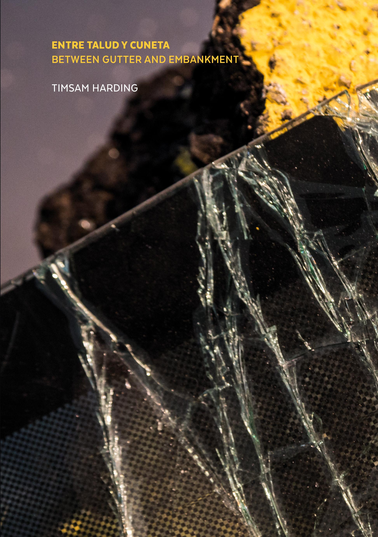 Imagen de portada de ENTRE TALUD Y CUNETA / BETWEEN GUTTER AND EMBANKMENT