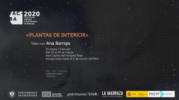 Imagen de portada de TALLER DE ANA BARRIGA «PLANTAS DE INTERIOR»