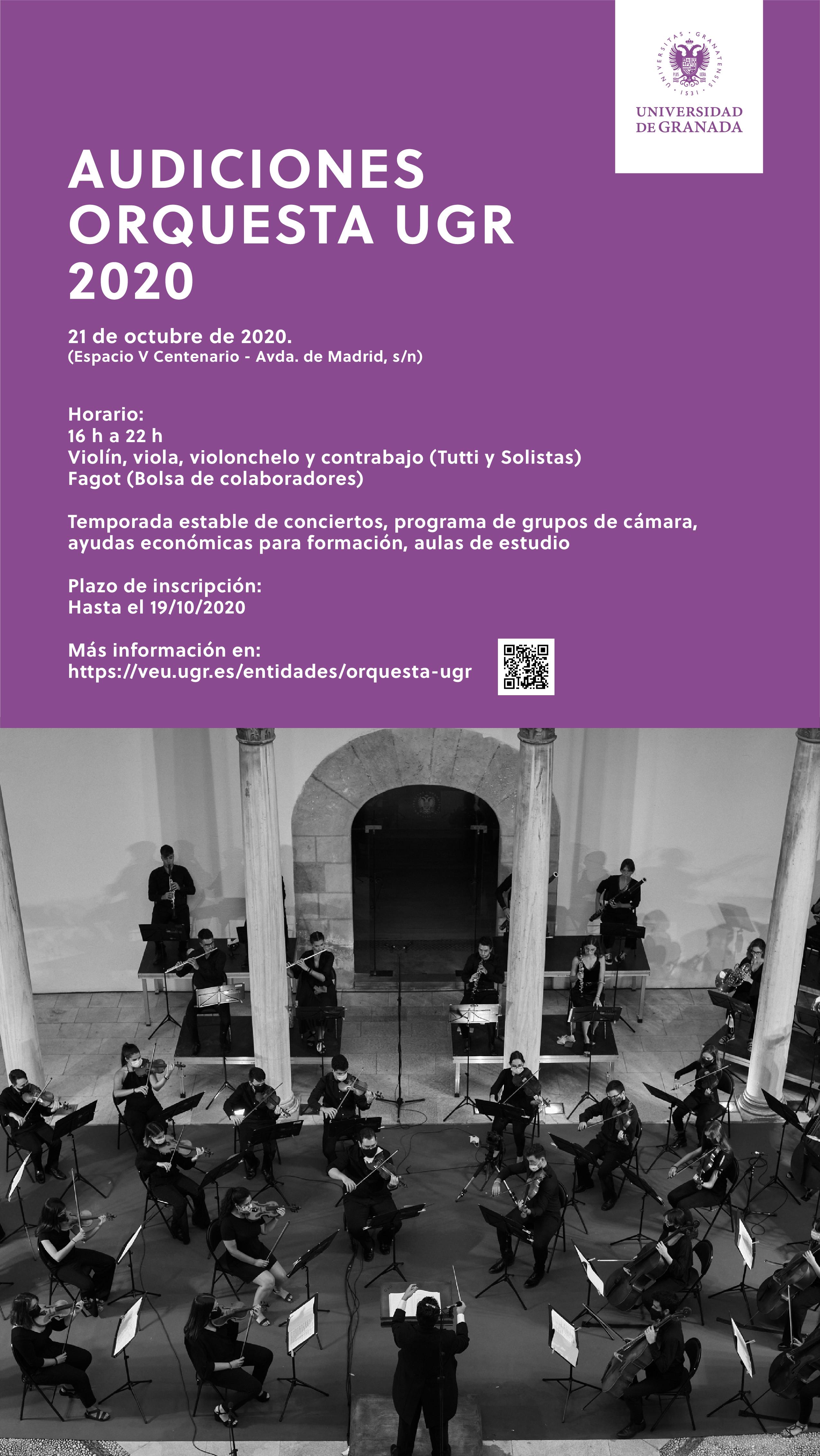 Imagen de portada de Audiciones Orquesta UGR 2020