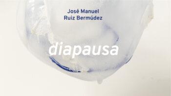 Imagen de portada de JOSé MANUEL RUIZ BERMúDEZ Diapausa