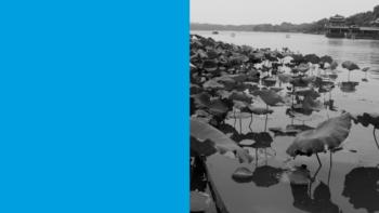 Imagen de portada de ANTONIO MEZCUA LóPEZ El lago invisible; la evolución de la pintura de paisaje china a través del Lago del Oeste