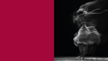 Imagen de portada de Selección candidatos/as proyecto de danza «Tener la cabeza a pájaros»