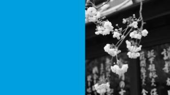 Imagen de portada de MAKIKO FUKUDA (UAB) Introducción a la escritura del idioma japonés