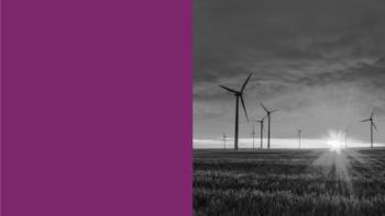 Imagen de portada de TERESA FAJARDO DEL CASTILLO Los grandes desafíos en la protección del medio ambiente